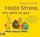 Carola Kleinschmidt: Hallo Stress, mir geht es gut