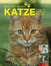 Zeit für meine Katze - Alle wichtigen Katzen-Tipps zu Haltung, Pflege, Charakter und die schönsten Katzenspiele