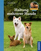 Martin Rütter: Haltung mehrerer Hunde