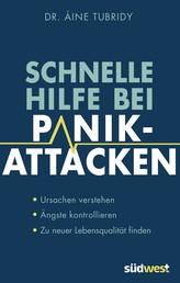 Schnelle Hilfe bei Panikattacken - Ursachen verstehen, Ängste kontrollieren, zu neuer Lebensqualität finden