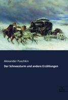 Alexander Puschkin: Der Schneesturm und andere Erzählungen ★★★