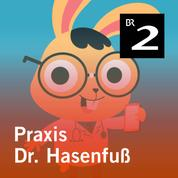 Praxis Dr. Hasenfuß