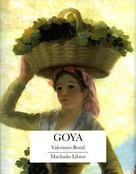Valeriano Bozal: Goya