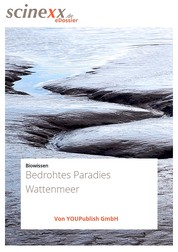 Bedrohtes Paradies Wattenmeer - Wo der Meeresboden begehbar ist...