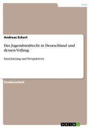 Das Jugendstrafrecht in Deutschland und dessen Vollzug - Einschätzung und Perspektiven