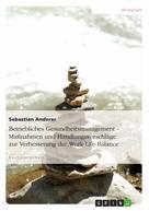 Sebastian Anderer: Betriebliches Gesundheitsmanagement - Maßnahmen und Handlungsvorschläge zur Verbesserung der Work-Life-Balance