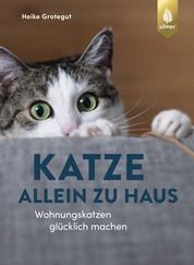 Katze allein zu Haus - Wohnungskatzen glücklich machen
