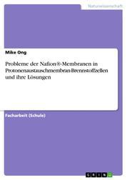 Probleme der Nafion®-Membranen in Protonenaustauschmembran-Brennstoffzellen und ihre Lösungen