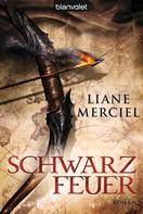 Liane Merciel: Schwarzfeuer ★★★★