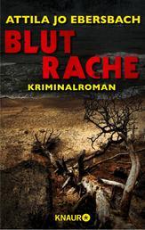 Blutrache. Ein Edersee-Krimi - Kriminalroman