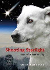 Shooting Starlight - Tales of a Street Dog