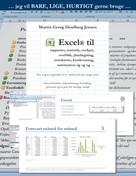 Martin Georg Houlberg Jensen: Excel til rapporter ...