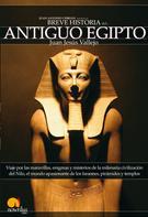 Juan Jesus Haro Vallejo: Breve Historia del Antiguo Egipto