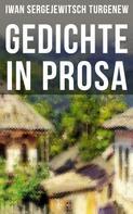Iwan Sergejewitsch Turgenew: Gedichte in Prosa