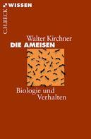 Walter Kirchner: Die Ameisen ★★★★★