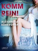 Alexandra Södergran: Komm rein! Erotische Novelle