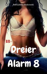 Dreier Alarm 8 - 15 versaute Dreier Storys