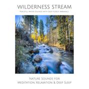 Wilderness Stream (without music) - Peaceful Water Sounds with Deep Forest Ambience - Nature Sounds for Meditation, Relaxation & Deep Sleep