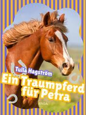 Ein Traumpferd für Petra