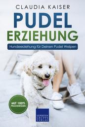 Pudel Erziehung: Hundeerziehung für Deinen Pudel Welpen