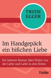 Im Handgepäck ein bißchen Liebe - Ein heiterer Roman über Ferien von der Liebe und Liebe in den Ferien