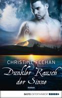 Christine Feehan: Dunkler Rausch der Sinne ★★★★★