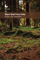 Miguel Ángel Franco Salas: Entre dos mundos