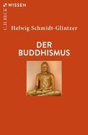 Helwig Schmidt-Glintzer: Der Buddhismus