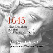 1645 - Eine Erzählung aus dem Dreißigjährigen Krieg