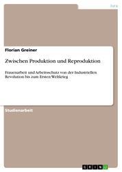 Zwischen Produktion und Reproduktion - Frauenarbeit und Arbeitsschutz von der Industriellen Revolution bis zum Ersten Weltkrieg