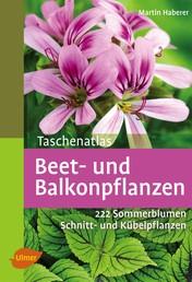 Taschenatlas Beet- und Balkonpflanzen - 222 Sommerblumen, Kübelpflanzen und Schnittpflanzen