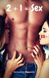2 + 1 = Sex - 15 versaute Dreier Storys