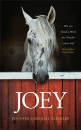 Joey - Wie ein blindes Pferd uns Wunder sehen ließ - Ein wahre Geschichte.