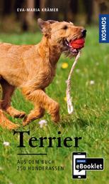 KOSMOS eBooklet: Terrier - Ursprung, Wesen, Haltung - Auszug aus dem Hauptwerk: 250 Hunderassen