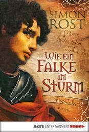 Wie ein Falke im Sturm - Historischer Roman