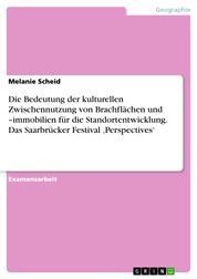 Die Bedeutung der kulturellen Zwischennutzung von Brachflächen und –immobilien für die Standortentwicklung. Das Saarbrücker Festival 'Perspectives'