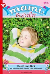 Mami Bestseller 15 – Familienroman - David im Glück