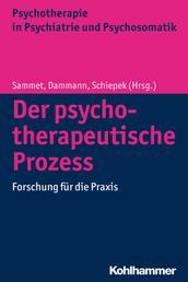 Der psychotherapeutische Prozess - Forschung für die Praxis