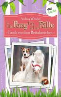 Andrea Wandel: Ein Pony für alle Fälle - Neunter Roman: Panik vor dem Reitabzeichen ★★★★★