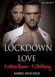 Lockdown Love. 4 x erotische Romane, 4 x Verführung