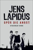 Jens Lapidus: Spür die Angst ★★★