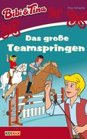 Theo Schwartz: Bibi & Tina - Das große Teamspringen ★★★★★