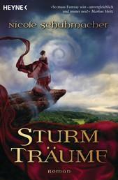 Sturmträume - Roman