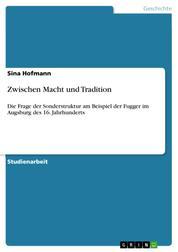 Zwischen Macht und Tradition - Die Frage der Sonderstruktur am Beispiel der Fugger im Augsburg des 16. Jahrhunderts