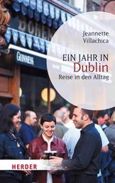 Ein Jahr in Dublin - Reise in den Alltag