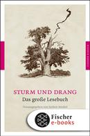 Jochen Strobel: Sturm und Drang
