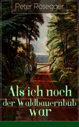 Als ich noch der Waldbauernbub war - Jugendgeschichten aus der Waldheimat