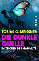 Tobias O. Meißner: Die dunkle Quelle ★★★★