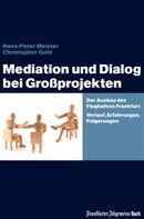 Hans-Peter Meister: Mediation und Dialog bei Großprojekten