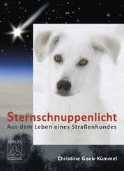 Sternschnuppenlicht - Aus dem Leben eines Straßenhundes